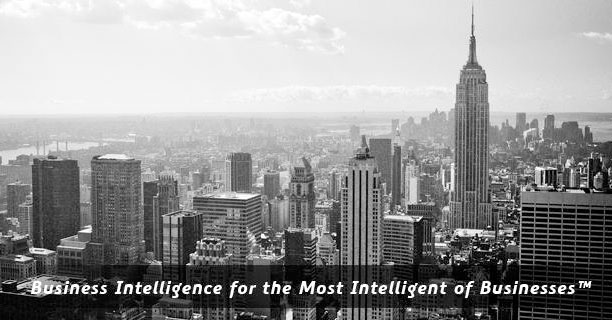 Business Intelligence for the Most Intellegent of Business